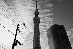 Overwhelming Presence (Junnn) Tags: sky blackandwhite bw tower japan clouds tokyo sumida oshiage 1635mmf28 canonef1635mmf28liiusm canoneos5dmarkii tokyoskytree silverefexpro2
