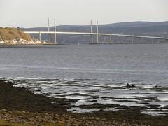Kessock Bridge (IrenicRhonda) Tags: 2012 geo:lat=5750330667 publuc geo:lon=429849667 geotagged october scotland u3a blackisleward unitedkingdom gbr public pregamesweepwinner pregs pre pres sweep bridge coast coastal beach seashore tags done redbubble highlands highlandsandislands schottland lascozia ecosse escocia اسكوتلندا irenicrhonda insta