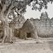 Shrine, Harar