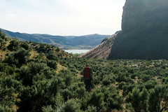 First look at Lake Owyhee (rozoneill) Tags: lake oregon river carlton butte desert hiking painted canyon vale trail backpacking saddle blm uplands owyhee honeycombs