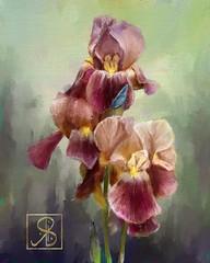 Iris_013 (Riccilynn) Tags: flowers painter corel 2016