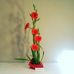 Sumiko's #ikebana