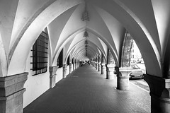 Roofed Sidewalk (zvaehn) Tags: bw white black symmetry symmetric symmetrical
