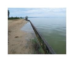 Le partage des eaux (Brulama) Tags: france eau horizon sable lac paysage etang rive landes muret etangdecazaux