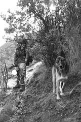 Marlene escondida y Rex vigilante (Mar Cifuentes) Tags: chile portrait naturaleza blancoynegro nature blackwhite retrato cajondelmaipo naturephotographer