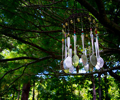 Wind Chimes (tnash_images) Tags: trees art nature leaves wind decoration spoon windchimes spoons