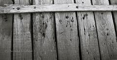 Rugged and Secure (Chiraag_Krishna) Tags: wood bridge abstract nails