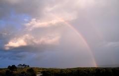 _DSC0001e ~ Double Rainbow (BDC Photography) Tags: trees usa clouds nikon texas texashillcountry nikond200 pipecreek banderacounty nikondslrcamera latigoranch cloudsstormssunsetssunrises tamronaf1750mmf28xrdiiildasphericaliflens tamronda09bayonetlenshood nikon67mmcircularpolarizeriifilter