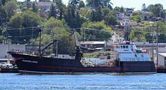 9403_Skandies Rose (lg evans Maritime Images) Tags: ballard lge shipcanal fishboat lgevans maritimeimages lgevans