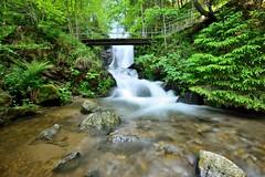 Todtnau waterfalls (michael.brem) Tags: todtnau waterfall blackforest water