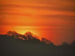Sunrise March 25th (webeyer) Tags: red orange sun sunrise dawn flickrchallengegroup flickrchallengewinner