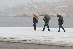 Snow in April (4 of 8) (Mauritzson Foto) Tags: winter snow umbrella vinter sweden stockholm april sverige strandvgen paraply