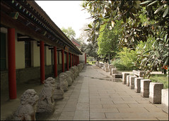 Garden Walk - Wild Goose Pagoda, Xian (China) (Esther Spektor - Thanks for 12+millions views..) Tags: world china park travel windows roof red vacation sculpture brown white tree green leaves stone buildings garden tile grey walk country pillar perspective lion row explore xian figure marble curved coth wildgoosepagoda bej artofimages exoticimage estherspektor