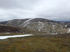 The Cheviot from the summit of Hedgehope Hill (josephp14) Tags: northumberland cheviot cheviothills hedgehopehill northumberlandnationalpark thecheviot hedgehopehillsummit