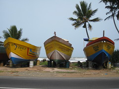 Fishing craft on the Galle road