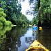 Edisto River Float 07-14-2012