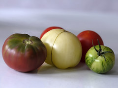 _1150029 (Old Lenses New Camera) Tags: stilllife plants garden tomatoes harvest cine panasonic telephoto g1 f25 wollensak 63mm 212inch