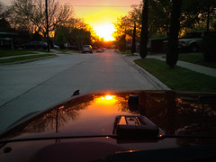 Through the Windshield