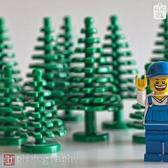 photobombing the forest (Sharon Linne Faulk) Tags: usa macro toys lego florida wesleychapel projectlife topazadjust capture365