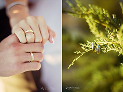 (Ole Lukoie) Tags: park autumn wedding light portrait people sun fall nature beauty smile face grass stars happy groom bride leaf hug kiss bokeh decoration naturallight weddingdress justmarried weddingday  50mmf14 happyness  whitedress       magiclight       beautifulllight aktau               kazakhwedding   kazakhpeople