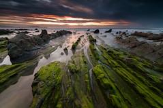 Green in seafog (BIZKAIA) (Jonatan Alonso) Tags: sunset green beach rocks waves bizkaia barrika seafog