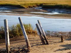 At Land's End (mahler9) Tags: beach sand october provincetown capecod massachusetts tide landsend moors lowtide piling breakwater 2014 jaym mahler9 andantecomodofotos