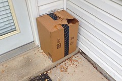 AMAZON PRIME DELIVERY (1 of 2) - PEANUTS FOR THE SQUIRRELS AND THEY COULDN'T WAIT FOR ME TO GET HOME AND UNPACK THEM (bslook1213) Tags: pets cute animals google squirrel squirrels funny flickr peanuts