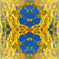 2016-05-16 yellow and blue (april-mo) Tags: abstract art net colors mirror symmetry flip symmetrical yellowandblue