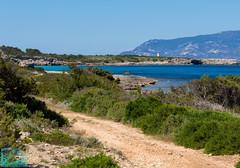 Pianosa 16334 (Roberto Miliani / Ginepro) Tags: trekking walking island hiking ile tuscany toscana elbe isola toskana camminare parconazionale arcipelagotoscano pianosa