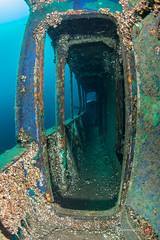 Rainbow passage way Niagara II (ScubaJo) Tags: scuba scubadiving drysuit tobermory underwaterphotography coldwaterdiving fathomfivenationalmarinepark ontariodiving drysuitdiving