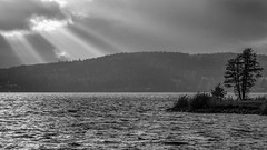 The church bay (PixPep) Tags: light blackandwhite lake shadows sweden sverige vrmland arvika glafsfjorden kyrkviken pixpep