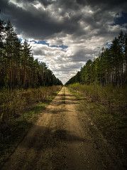 central point (Mris Pehlaks) Tags: road trees sky green nature clouds landscape spring outdoor perspective latvia