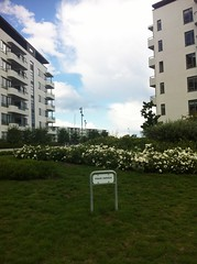 Tuborg Havnepark (2008) (annindk) Tags: copenhagen signage housing hellerup