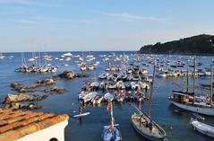 calella jul16_296 (xavit0463) Tags: costa port mar mediterraneo bo catalunya brava catalua calella palafrugell 2016 ensayos mediterrani habaneras havaneres assaig portbo