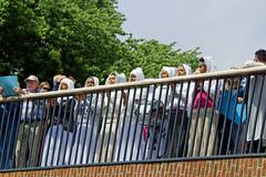 Bosch Parade for Freedom (Dutch_Chewbacca) Tags: bridge music art water netherlands freedom women artist singing performance nederland parade denbosch brabant bosch stad shertogenbosch noordbrabant 073 duketown jheronimus bosch500 boschparade paradeplaatje