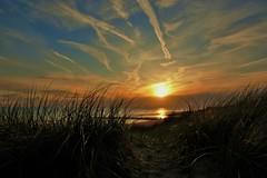 ondergaande zon bij Nollebos (Omroep Zeeland) Tags: natuur zeeland zee zon vlissingen walcheren ondergaande nollestrand