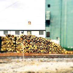 norwegian wood (amona s...) Tags: hipstamatic