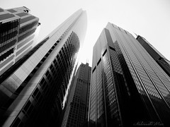 Chicago street (NaturewithMar) Tags: chicago architecture urban building street blackandwhite monochrome geometry black white highrise sky nikoncoolpix abstract texture skyline
