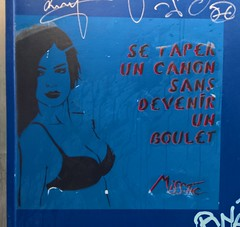 """Se taper un canon sans devenir un boulet"" Paris 2016 by Miss.Tic (Denis Bocquet) Tags: graffiti stencil miss tic misstic"