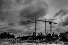 projet d'avenir (Patrice Dx) Tags: forest bruxelles ciel chantier urbanisation grues paysageurbain