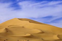 Desert Dunes (TARIQ-M) Tags: sky cloud texture sahara landscape sand waves pattern desert ripple patterns dunes wave ripples riyadh saudiarabia بر الصحراء canoneos5d الرياض سماء غيوم صحراء goldensand رمال سحب سحابة رمل canonef70200mmf4lusm طعس كانون المملكةالعربيةالسعودية غيمة الرمل خطوط صحاري canoneos5dmarkii نفود الرمال كثبان براري تموجات تموج الرمالالذهبية نفد