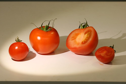 Rotting Tomato HD - The Time Lapse Guys