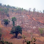 "Deforestation Near Hsipaw <a style=""margin-left:10px; font-size:0.8em;"" href=""http://www.flickr.com/photos/14315427@N00/7071273899/"" target=""_blank"">@flickr</a>"