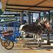 Donkey Taxi. Mijas. Málaga. Andalusia. Spain