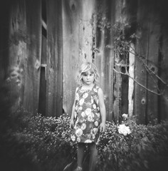 little m, santa cruz, june 2012 [#023901] (Jeff Merlet Photography) Tags: wood family portrait blackandwhite bw 120 film girl analog children holga child dress kodak trix toycamera 400 120n wilderranch rpl trix400 201206 analogphotgraphy journeyofanorcalfamily jeffmerletphotography jeffmerlet photojeffmerletcom r0239 rpl0033