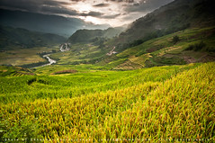 Sapa (joeziz EK pholrojpanya) Tags: city travel nature landscape photography nikon artist image images vietnam getty picks sapa fototrove