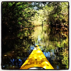 Kayaking on Little Manatee (Remarqed.com) Tags: county old family trees nature yellow river boat stream kayak