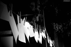 i ricordi appesi a un filo (raffaellamidiri) Tags: birthday party night garden countryside fotografie photographs converse festa compleanno prato giardino greengrass barefootinthepark fuoricittà apiedinudinelparco piccolefotografecrescono raffaellamidiri raffamid