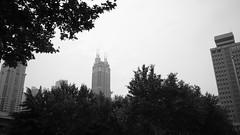 Shanghai Museum - skyline.