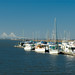 Golden Isles Marina 2